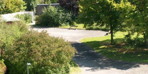 Unser Schulhof mit viel Grün
